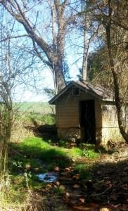 spring_house